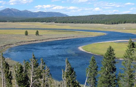 Yellowstone River in Hayden Valley of Yellowstone National Park