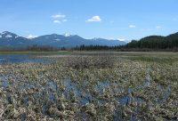 Swan River National Wildlife Refuge